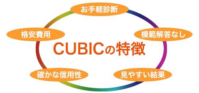 CUBICの特徴 お手軽診断 格安費用 確かな信頼性 模範解答なし 見やすい結果